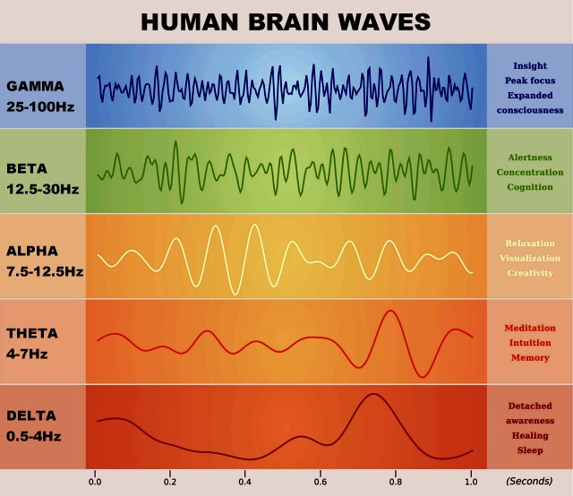 Alpha Brainwaves